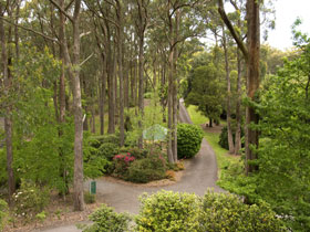 Mount Lofty Botanic Garden - Accommodation Perth