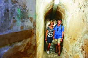 Rottnest Island Full-Day Trip With Guided Island Tour From Perth - Accommodation Perth