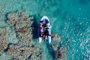 Glass-bottom boat tour with Whitehaven Beach - Accommodation Perth